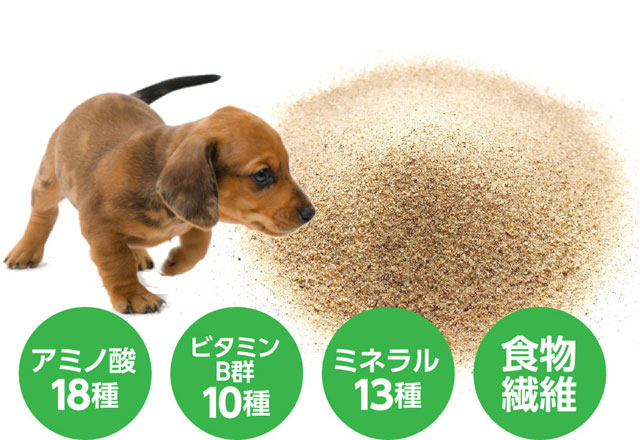 原材料について説明。粉末状のキュアペットを食べる犬
