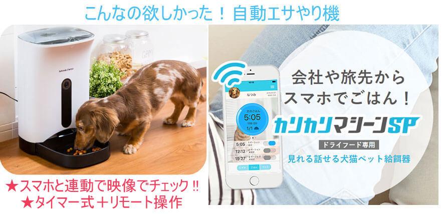 スマホで遠隔操作!タイマー設定で自動給餌してくれるペット餌やり機!