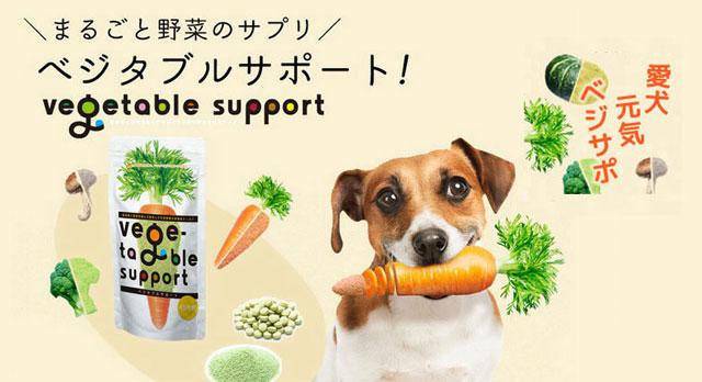 にんじんを頬張る犬と野菜サプリメントのベジタブルサポート