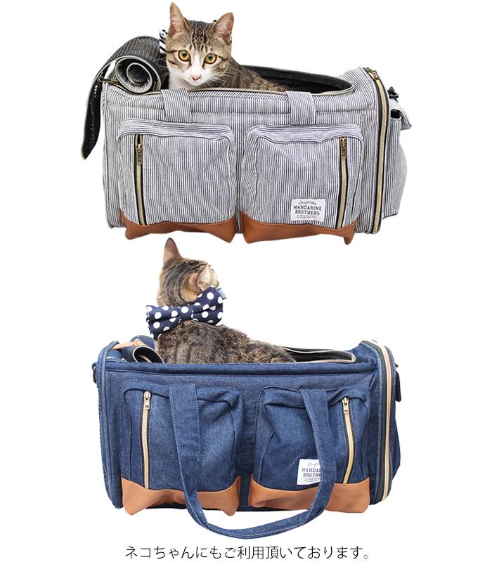 ビックポケットキャリーバッグのリニューアルモデルに猫が入った場合のイメージ画像