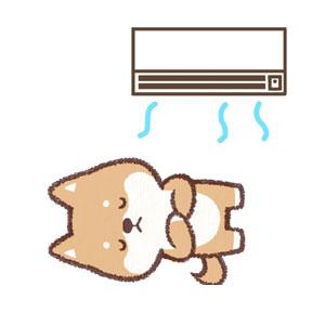 エアコンで犬の遺体が安置されている部屋を冷やす様子