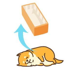犬の遺体を棺に移すイメージ